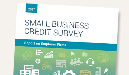 2017 Small Business Survey: Report on Employer Firms
