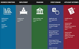 Spring 2014 Small Business Credit Survey