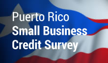 Puerto Rico Small Business Credit Survey