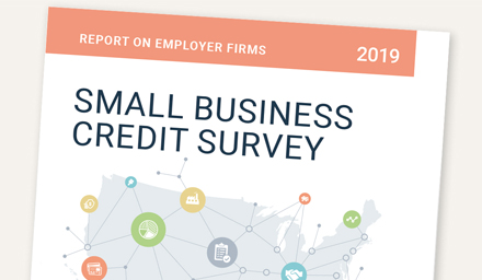 Report on Employer Firms Based on 2018 Small Business Credit Survey