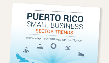 Puerto Rico Small Business Sector Trends: Evidence from the 2018 New York Fed Survey