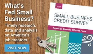 What's Fed Small Business?